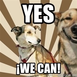Stoner dogs concerned friend - yes ¡we can!