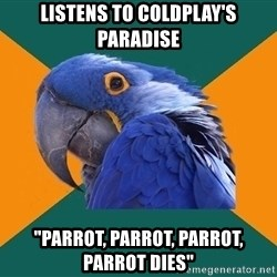 """Paranoid Parrot - listens to coldplay's paradise """"parrot, parrot, parrot, parrot dies"""""""