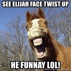Horse - see elijah face twist up he funnay LOL!
