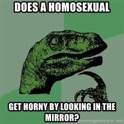 Philosoraptor - Does a homosexual Get horny by looking in the mirror?