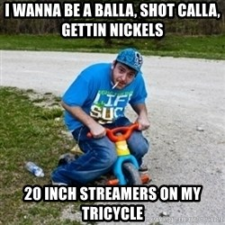 Thug Life on a Trike - I WANNA BE A BALLA, SHOT CALLA, GETTIN NICKELS 20 INCH STREAMERS ON MY TRICYCLE