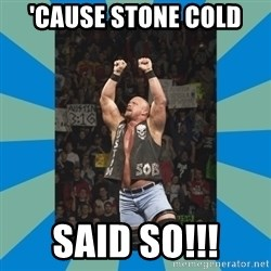 stone cold steve austin - 'Cause stone cold Said so!!!