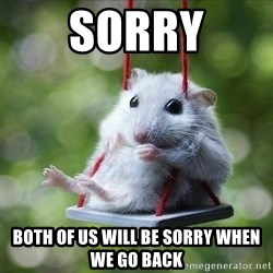 Sorry I'm not Sorry - sorry both of us will be sorry when we go back