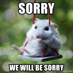 Sorry I'm not Sorry - sorry we will be sorry