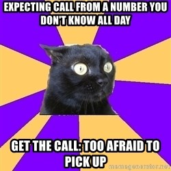 Anxiety Cat - expecting call from a number you don't know all day get the call: too afraid to pick up
