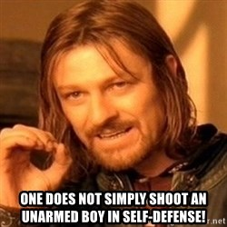 One Does Not Simply - ONE does not simply shoot an unarmed boy in self-defense!