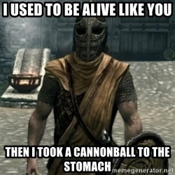 skyrim whiterun guard - I used to be alive like you then I took a cannonball to the stomach