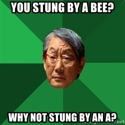 High Expectations Asian Father - you stung by a bee? why not stung by an a?