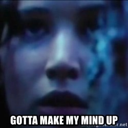 Hunger Games - Katniss Everdeen - gotta make my mind up