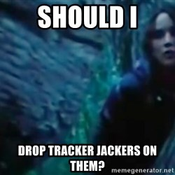 Hunger Games - Katniss Everdeen - should i drop tracker jackers on them?
