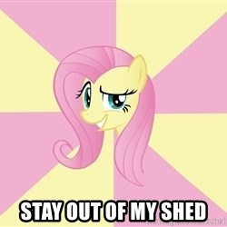 rebellious fluttershy  - stay out of my shed