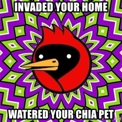 Omsk Crow - invaded your home watered your chia pet