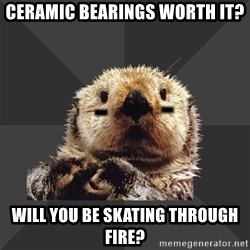 Roller Derby Otter - Ceramic bearings worth it? will you be skating through fire?