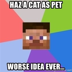 Minecraft Man - Haz a cat as pet worse idea ever...