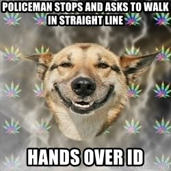 Stoner Dog - policeman stops and asks to walk in straight line hands over id