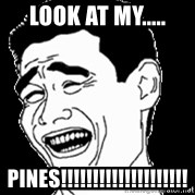 Laughing - look at my..... pines!!!!!!!!!!!!!!!!!!!!