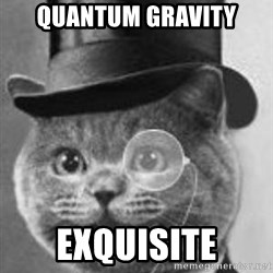 Monocle Cat - Quantum gravity Exquisite