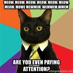 Business Cat - meow, meow, meow, meow, meow, meow, meow, mowe mewmem, wemwem,wmem are you even paying attention?