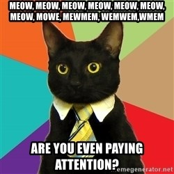 Business Cat - meow, meow, meow, meow, meow, meow, meow, mowe, mewmem, wemwem,wmem are you even paying attention?