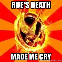 Typical fan of the hunger games - RUE'S DEATH MADE ME CRY