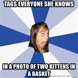 Annoying Facebook Girl - TAGs everyone she knows in a photo of two kittens in a basket
