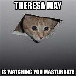 Ceiling cat - Theresa May Is watching you masturbate