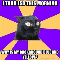 Anxiety Cat - I took lsd this morning why is my background blue and yellow?
