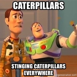Consequences Toy Story - CATERPILLARS Stinging CATERPILLARs Everywhere