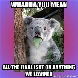 Koala Surprise - whadda you mean all the final isnt on anything we learned