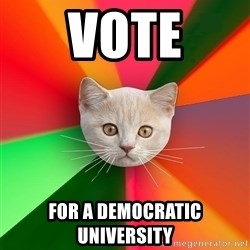Advice Cat - VOTE for a democratic university