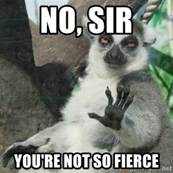 Not Today Lemur - no, sir you're not so fierce