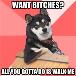 Cool Dog - Want bitches? All you gotta do is walk me
