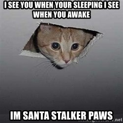 Ceiling cat - I See You When Your Sleeping I See When You Awake IM SANTA STALKER PAWS