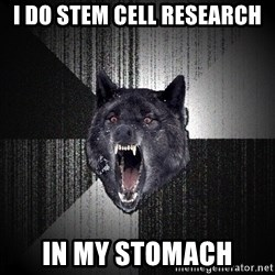 Insanity Wolf - i do stem cell research in my stomach