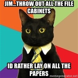 Business Cat - jim...throw out all the file CABINETS id rather lay on all the papers