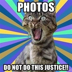 OMG Cat - PHOTOS DO NOT DO THIS JUSTICE!!