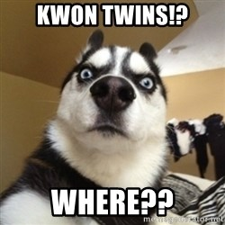 Surprised Husky - Kwon twiNS!? WHERE??