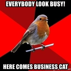 Retail Robin - everybody look busy! here comes business cat