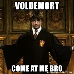 Harry Potter Come At Me Bro - Voldemort Come at me Bro