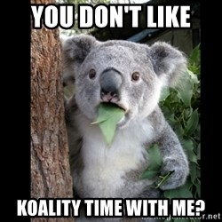 Koala can't believe it - you don't like  koality time with me?