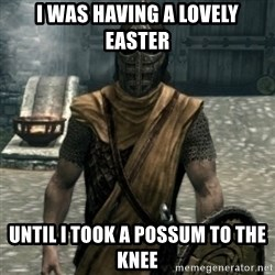 skyrim whiterun guard - i was having a lovely easter until i took a possum to the knee