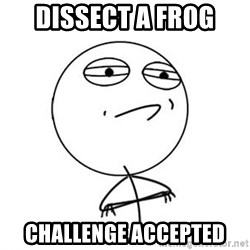 Challenge Accepted HD 1 - DISSECT A FROG  CHALLENGE ACCEPTED