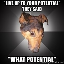 "Depression Dog - ""live up to your potential"" they said ""what POTENTIAL"""