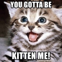 HAPPY KITTEN - YOU GOTTA BE KITTEN ME!