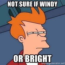 Futurama Fry - not sure if windy or bright