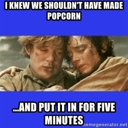 Lord of the Rings - I knew we shouldn't have made popcorn ...And put it in for five minutes