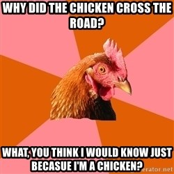 Anti Joke Chicken - why did the chicken cross the road? what, you think I would know just becasue I'm a chicken?