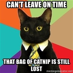 Business Cat - can't leave on time that bag of catnip is still lost