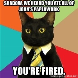 Business Cat - Shadow, we heard you ate all of john's paperwork you're fired.