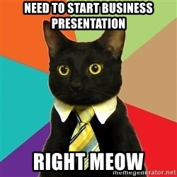 Business Cat - Need to start business presentation Right Meow